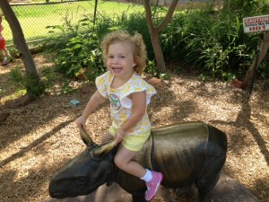 Cam on rhino at zoo